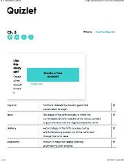 web layout quizlet ch19eaqquizlet mental health ch 19 flashcards quizlet