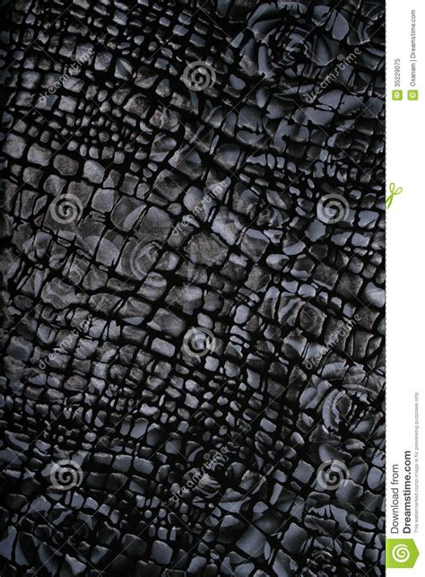 black white pattern material black and white fabric with flower pattern as background