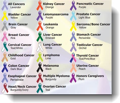 types of cancer pictures types of cancer related keywords suggestions types of cancer keywords