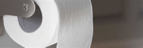 Toilet Paper Guide by Best Toilet Paper Buying Guide Consumer Reports