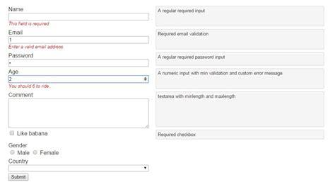 pattern validation angular basic angular field validation directive angular script