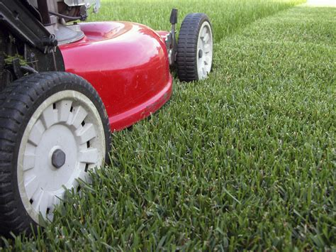 lawn mowing clayton bitler service company