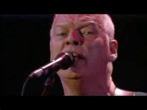 comfortably numb live 8 pink floyd comfortably numb live 8 youtube