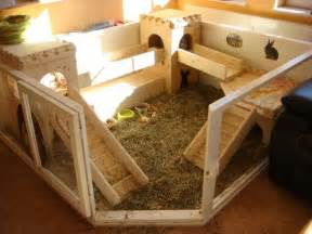 Guinea Pig Outdoor Hutch Dream Awesome Rabbitat Very Spoilt Bunnies Must Live