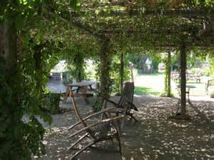 Vine Covered Pergola by Gallery For Gt Hops Vine Pergola