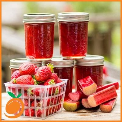 Tfa 1 Gallon Strawberry Flavor Diy Essence Liquid strawberry rhubarb by real flavors