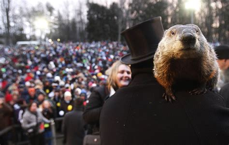 groundhog day in groundhog day in punxsutawney