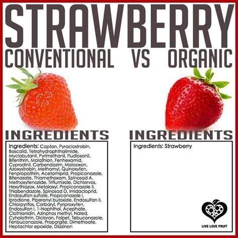 genetic avoid genetically engineered foods by jeffrey m smith fairfield ia organic or gmo strawberries wise warnings strawberries