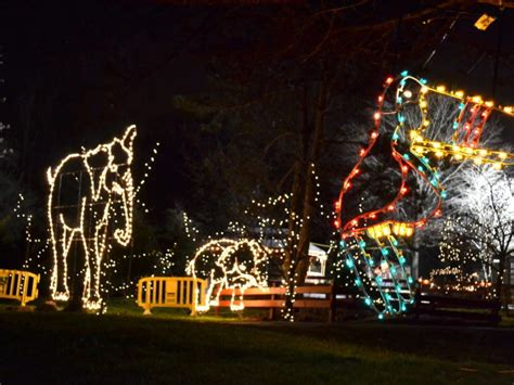 photos holiday lights spectacular at turtle back zoo