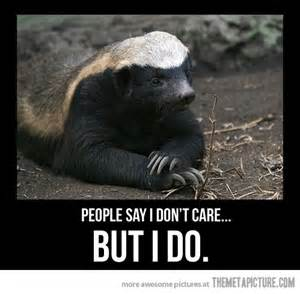 Honeybadger Meme - do you care stickey s place o stuff day one patch boards