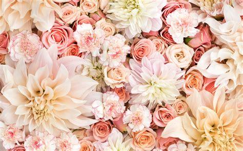 wallpaper desktop floral pinterest patterns prints gold white rose google search