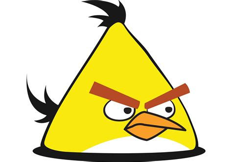 angry bid yellow angry bird vector