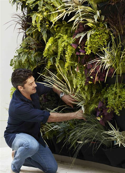 durie vertical gardens gardening tips