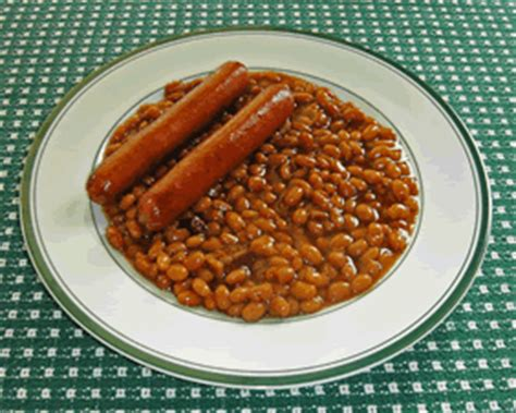 can dogs eat baked beans conspiracy underrated food the dawg shed