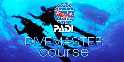 dive master padi dive master course at poseidon diving station sri lanka