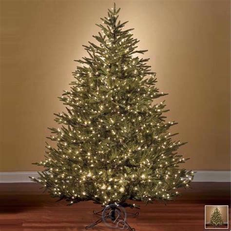 worlds best prelit fraser artificial christmas tree led ebay