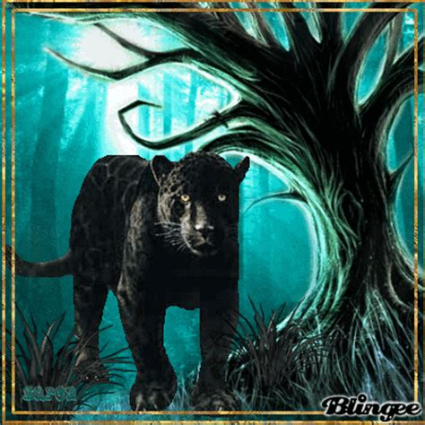 Baju Anime Black Panther 11 black panther in the forest picture 124873104 blingee