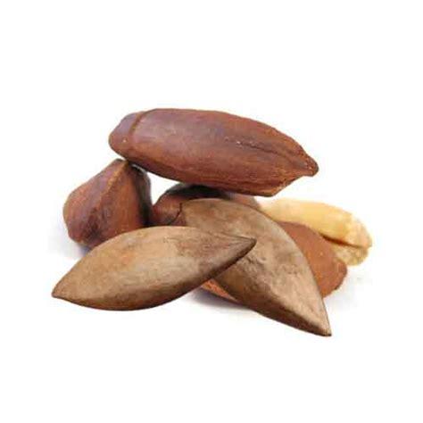 Pili Search Pili Nut Nutrition Facts Pili Nut Health Benefits