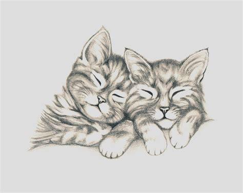 imagenes tiernas en lapiz dibujos a lapiz de gatos dibujos a lapiz