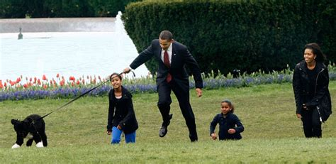 the obama s obama dog flies on own plane