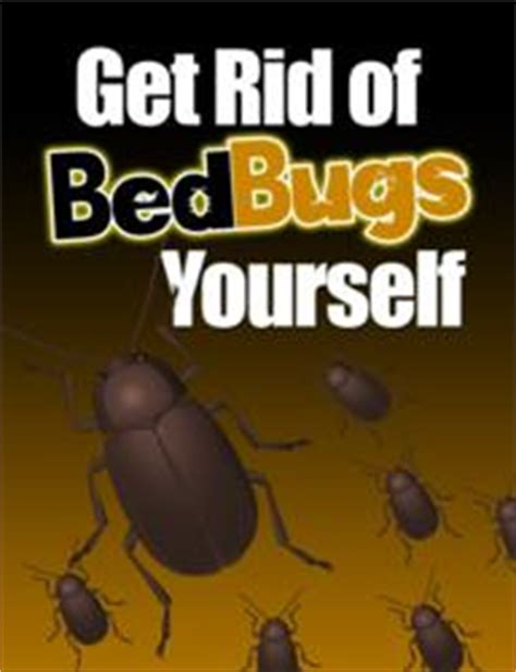 kill bed bugs yourself how much is a bed bug exterminator bedbugexterminator911