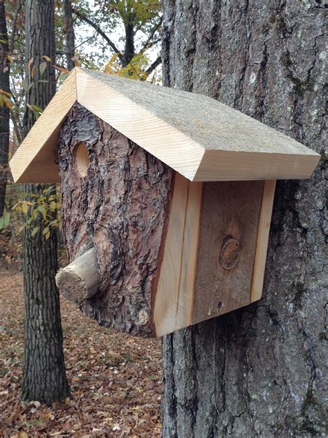 extreme birdhouse bird house plans