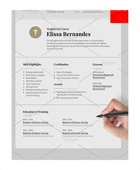 Registered Resume Template by 11 Resume Templates Pdf Doc Free Premium