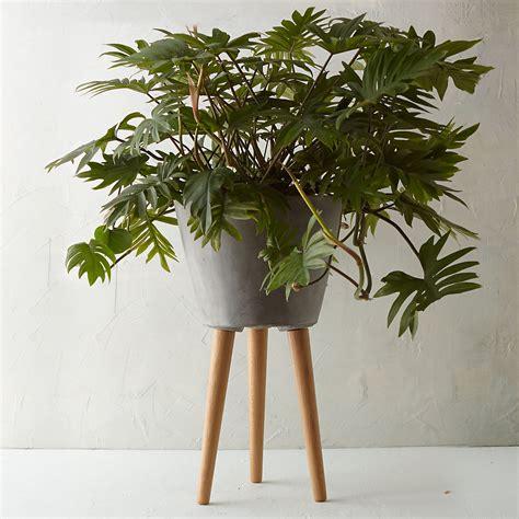 indoor planter  stand garden planters terrain