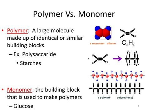 carbohydrates polymer name chapter 5 the structure and function of macromolecules