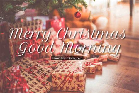 merry christmas good morning pictures   images  facebook tumblr pinterest