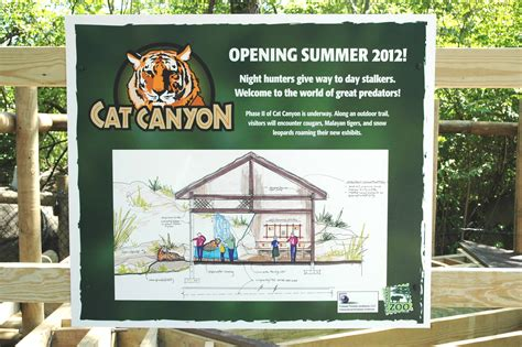 Cat House Detox Cincinnati by Hunters Opens Cincinnati Zoo