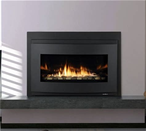 Gas Stove Inserts Convert Fireplace To Gas Insert Website Of Xivohere