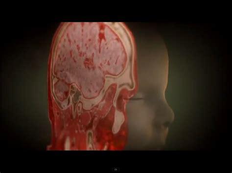 fotos del interior del cuerpo humano el m 237 stico viaje al interior del cuerpo humano