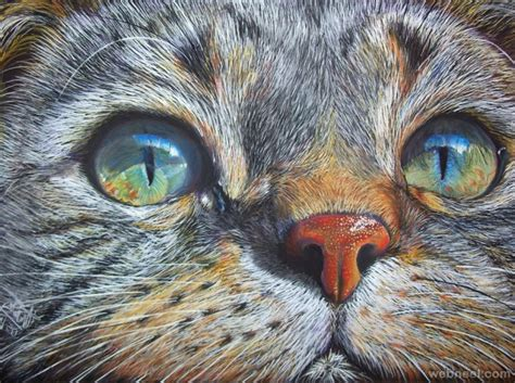 %name best colored pencils for artists   colored pencil   Nicole M. Cleary