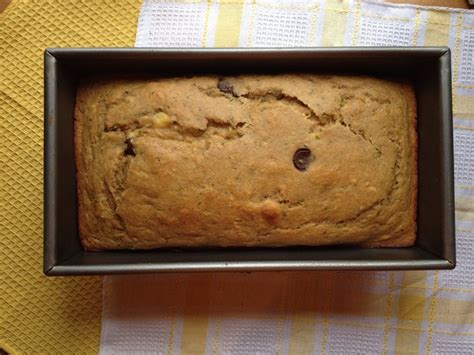 whole grains toddlers healthy whole grain chocolate chip zucchini bread