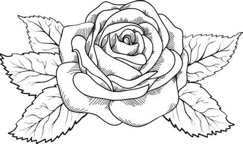 imagenes de rosas hermosas para dibujar dibujos flores para colorear e imprimir lindas dibujos