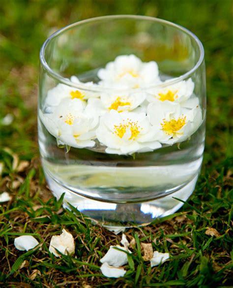 assunzione fiori di bach utilizzo e preparazione dei fiori di bach bambino naturale