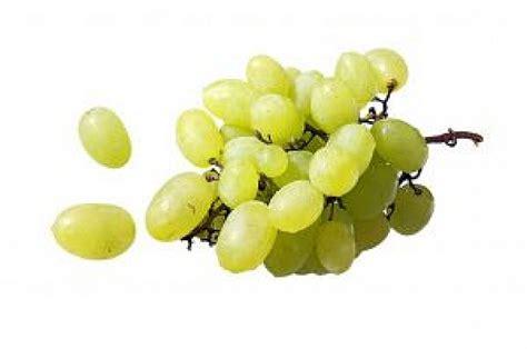 uvas blancas imagenes uvas blancas 3 baixar fotos gratuitas