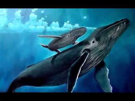 la ballena la ballena azul video1 mov youtube