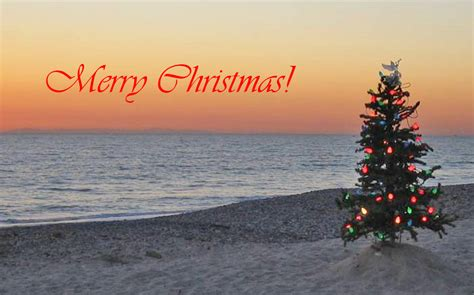 surf city merry christmas happy holidays  surf city