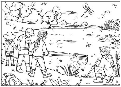 summer coloring pages activity village pond dipping colouring page