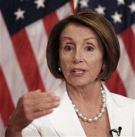 the schneider web i have nancy pelosi hair 78 best images about projects to try on pinterest nancy
