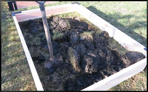 Raised Bed Vegetable Garden Soil Preparation My New Raised Beds Soil Stephi Gardens