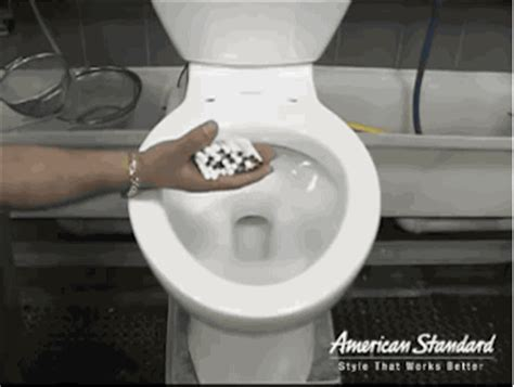 flush test gif find & share on giphy