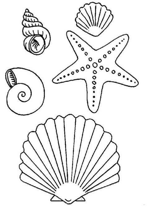 starfish coloring pages preschool images for gt simple seashell drawings tattoos i want