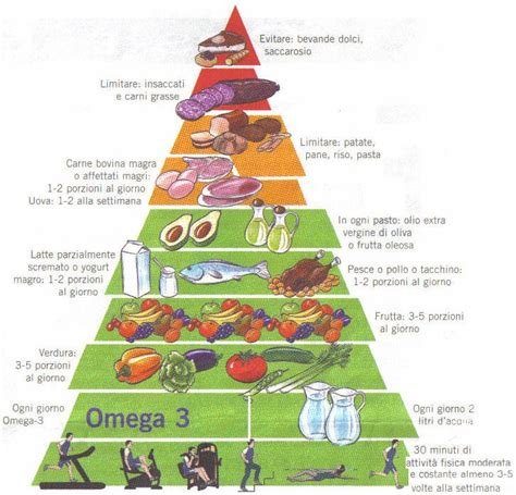dieta alimentare sana alimentazione sana il memorandum dottor sport