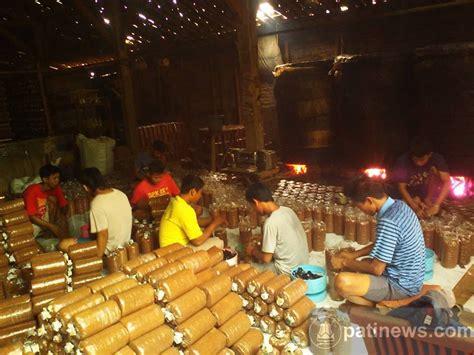 Bibit Jamur Tiram Kudus pengusaha asal gembong ini sukses bisnis jamur tiram
