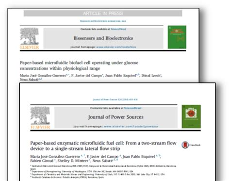 fuel cell research paper hydrogen fuel cell research papers dissertationsynonym x
