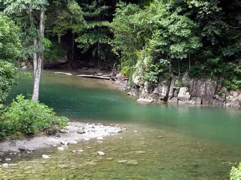 Find In And Tobago 10 Reasons Why Tobago Won Best Caribbean Destination For Nature Holidays