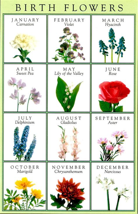 birth month flowers tattoos may of the valley may birth flowers